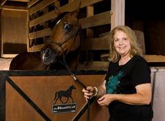 horse, barn, Llama Lane, llamas, picture, photo, equestrian