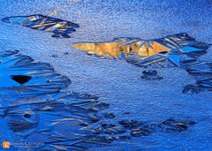 color,photo,picture,winter,granite,reflection,icy,ice,feathers,flakes,frozen,crystals,Tioga,tarn,Yosemite