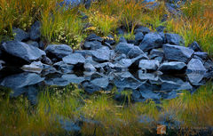 Autumn, hue, grass, shrubs, blue, granite, reflected, tranquil, Merced River, Yosemite Valley, California
