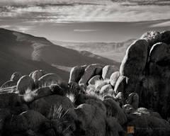 Morning, light, illuminate, granite, shrubs, mountain, ridge, Mojave Desert, California