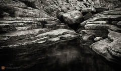 photo,picture,pool,bath,sacred,secret,Indian,canyon,Yosemite,granbite,exfoliation,layers,lines,b/w,black and white,monochrome,boulders,lichen