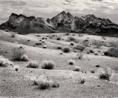 Turtle Mountains, Mojave Desert, clouds, shrubs, arid, black and white, fine art photograph, fine art print, photo, picture