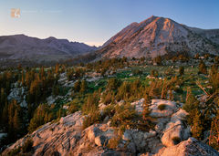 sunset, windswept, high elevation, timberline, plateau, majestic, Mount Conness, Yosemite National Park, California