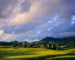 picture, photo, sunrise, clouds, Anahola, Kaua'i, landscape, fine art print