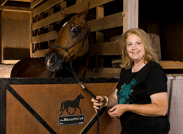 horse, barn, Llama Lane, llamas, picture, photo, equestrian, photo