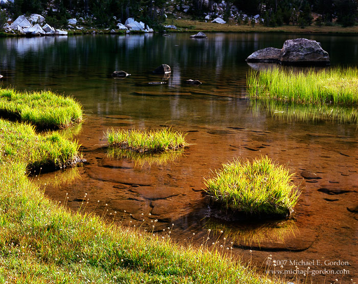picture, photo, Elizabeth Lake, Yosemite National Park, grass and wildflowers, landscape, fine art print, photo