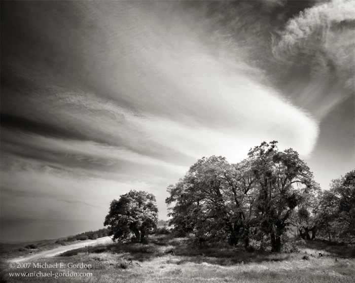 picture, photo, Old Ridge Route, oak trees, clouds, sky, black and white, fine art print, photo