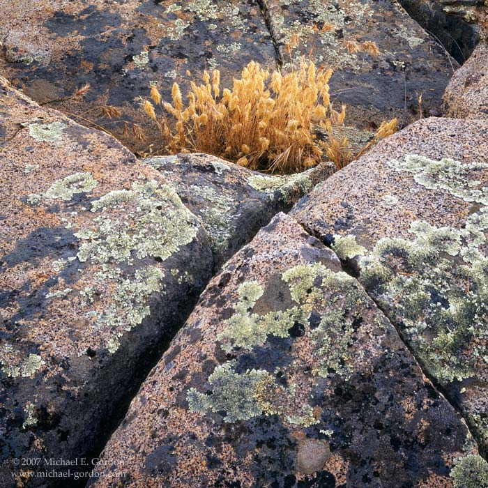 picture, photo, Santa Rosa Plateau, granite, lichen, landscape, fine art print, photo