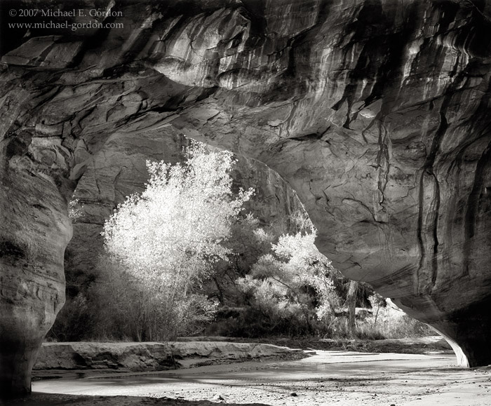 Coyote Natural Bridge, Grand Staircase-Escalante, Coyote Gulch, Glen Canyon, cottonwood trees, geology, Great Basin, black and white, fine art photograph, fine art print, photo, picture, photo