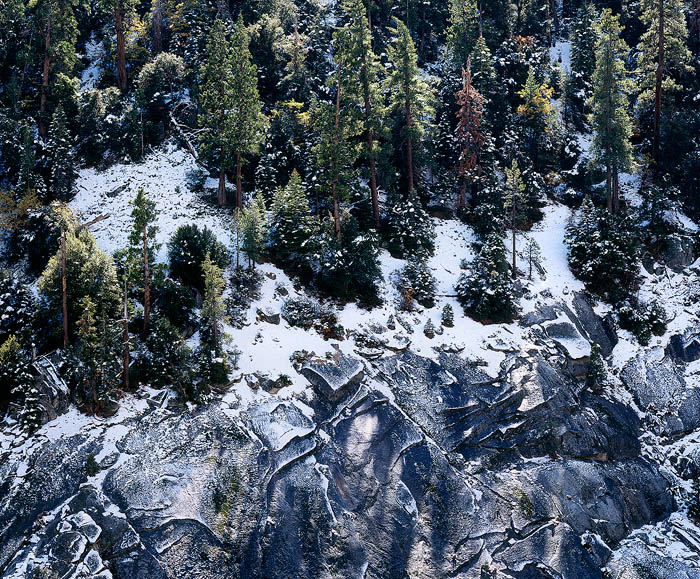 picture, photo, pine trees, snow, snowy, granite slabs, Sierra Nevada, fine art print, photo