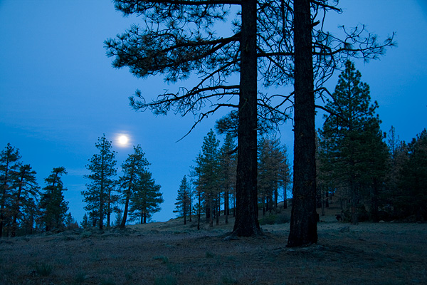 Alamo Mountain, Los Padres National Forest, picture, photo, moon, moonset, photo