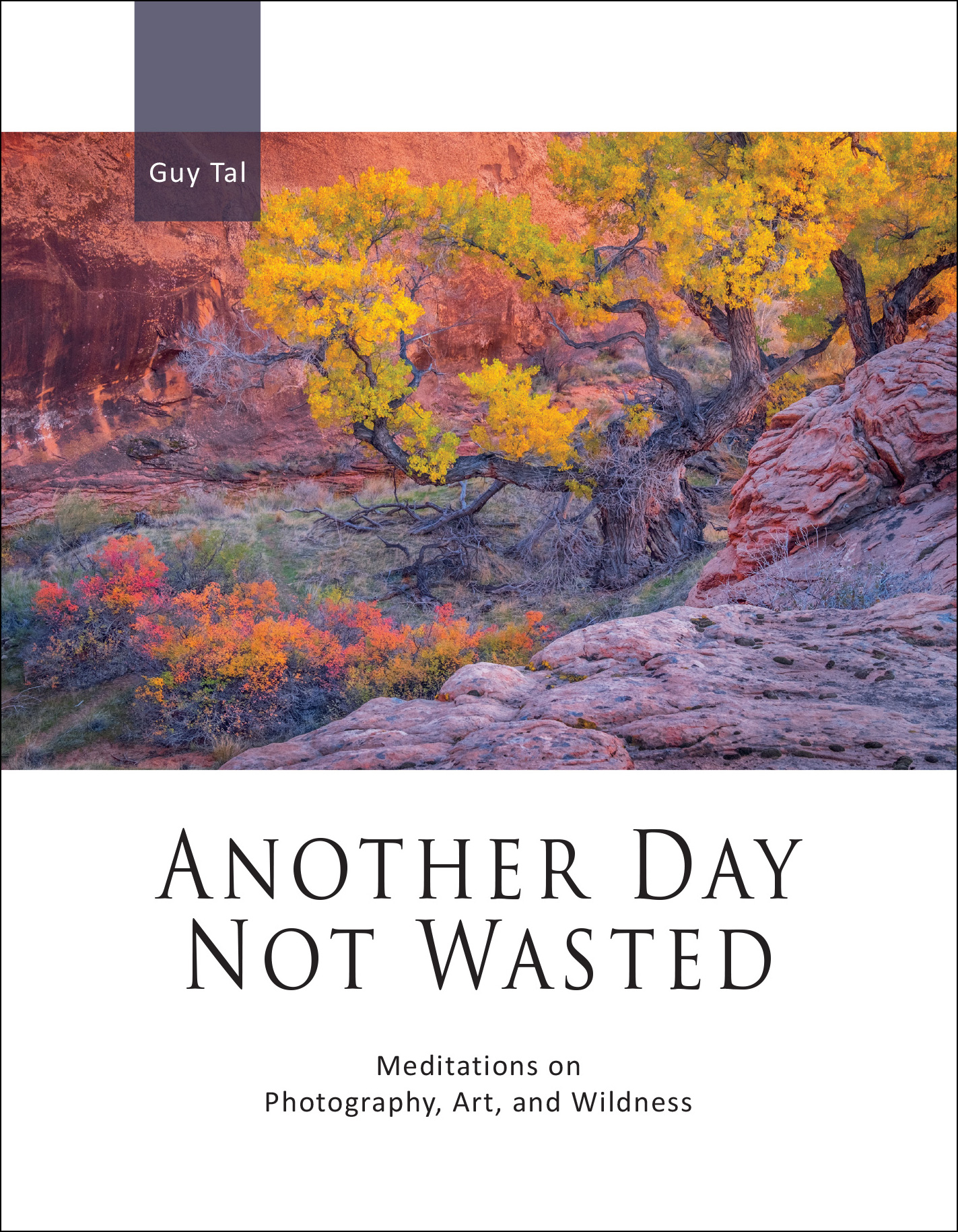 Guy Tal: Another Day Not Wasted