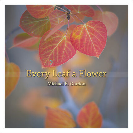 Every Leaf a Flower by Michael E. Gordon