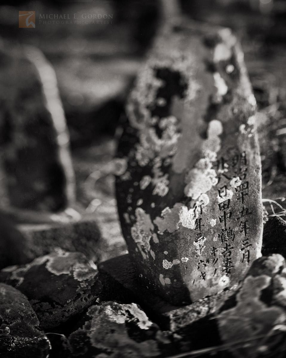 forgotten, lichen, grave, Kaua'i, Hawai'i, photo