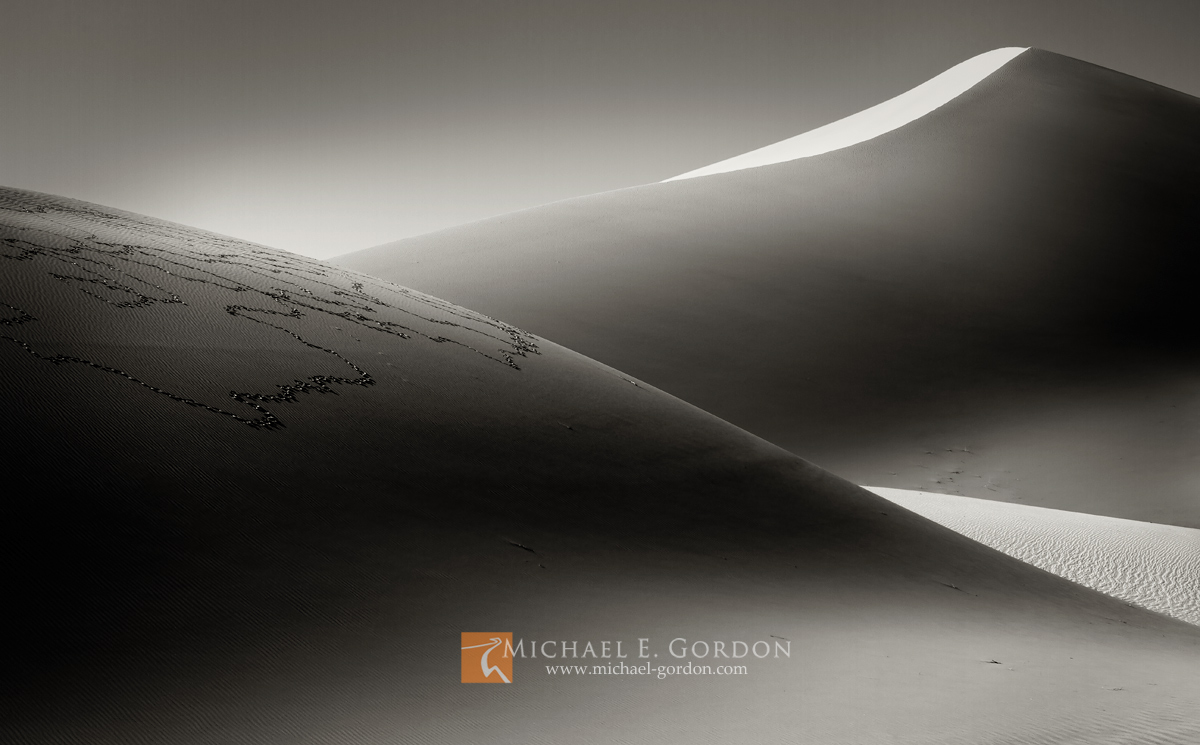 Mysterious light and tracks of the common Raven (Corvus corax) on Death Valley National Park's Eureka Sand Dunes.