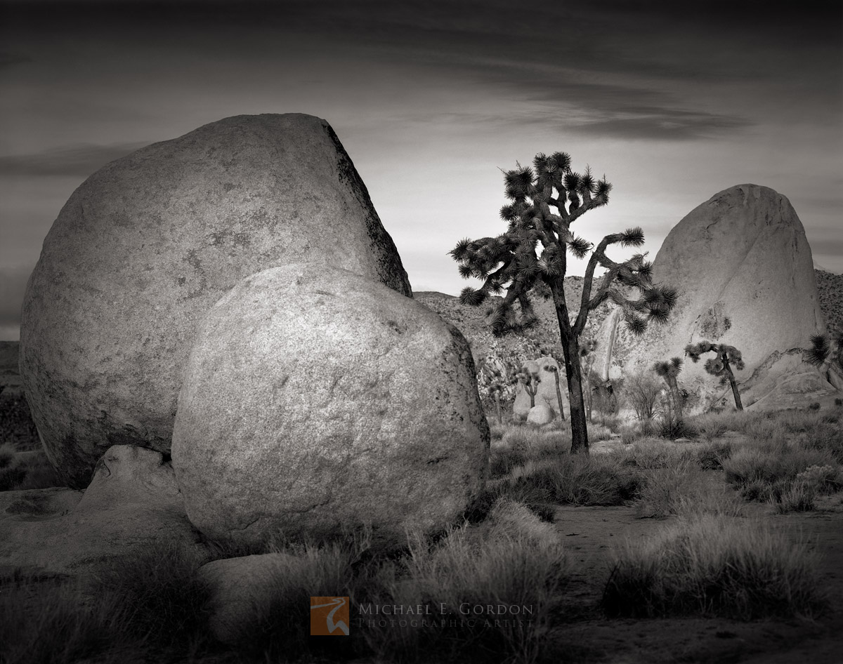 A serene morning dawns over the rock formations and Joshua trees ofLost Horse Valley. Logos and watermarks are not found...