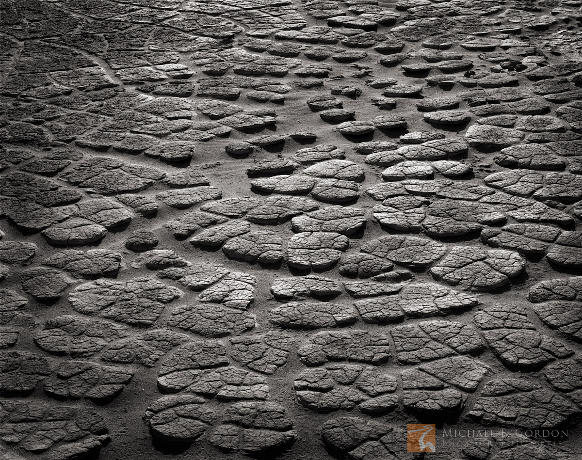 Cracked, tiled, mud, lizard, skin, Death Valley, California, photo