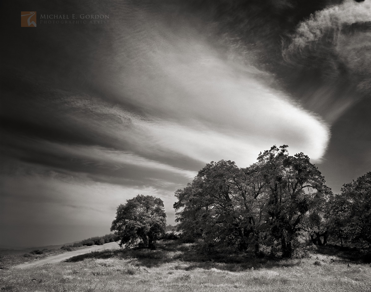 Oak trees (Quercus spp.)and the Old Ridge Route framed by large cirrus clouds.Logos and watermarks are not found on any printed...