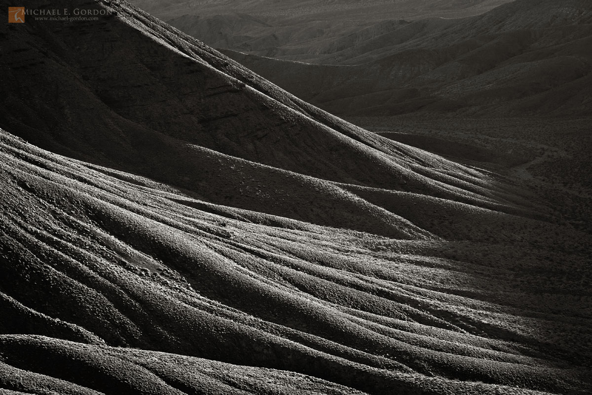 photo,picture,highlights,slopes,ridges,forms,layers,repeating,roots,tree,canyon,wash,shadows,Grapevine Mountains,Death Valley, photo