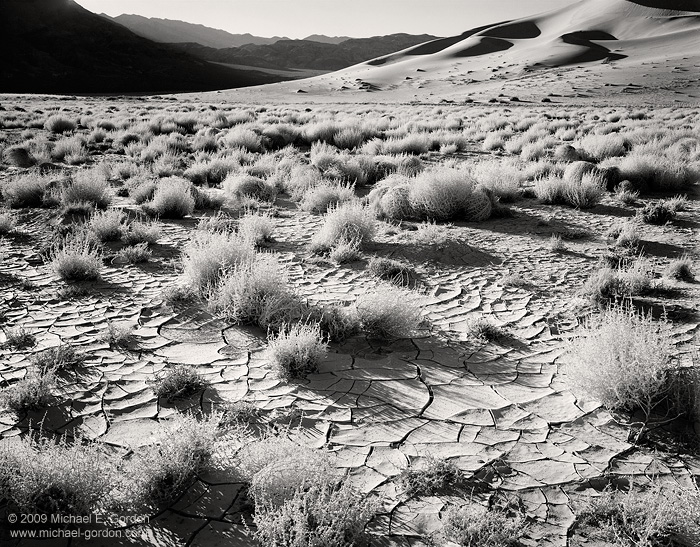 black and white, fine art photograph, fine art print, photo, picture, Eureka Valley, Death Valley, tumbleweeds, cracked mud, shadows, sand dunes, photo