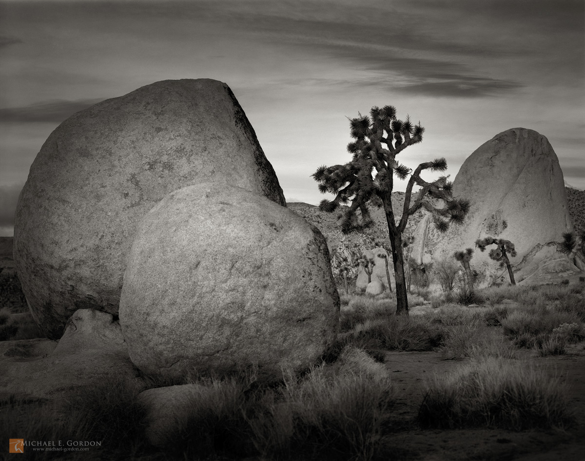 photo,picture,large format,b/w,b&w,black and white,quiet,peaceful,tranquil,morning,dawn,boulders,Yucca brevifolia,Lost Horse Valley,Joshua Tree,clouds,rocks,granite,formation,zen,b&w, photo