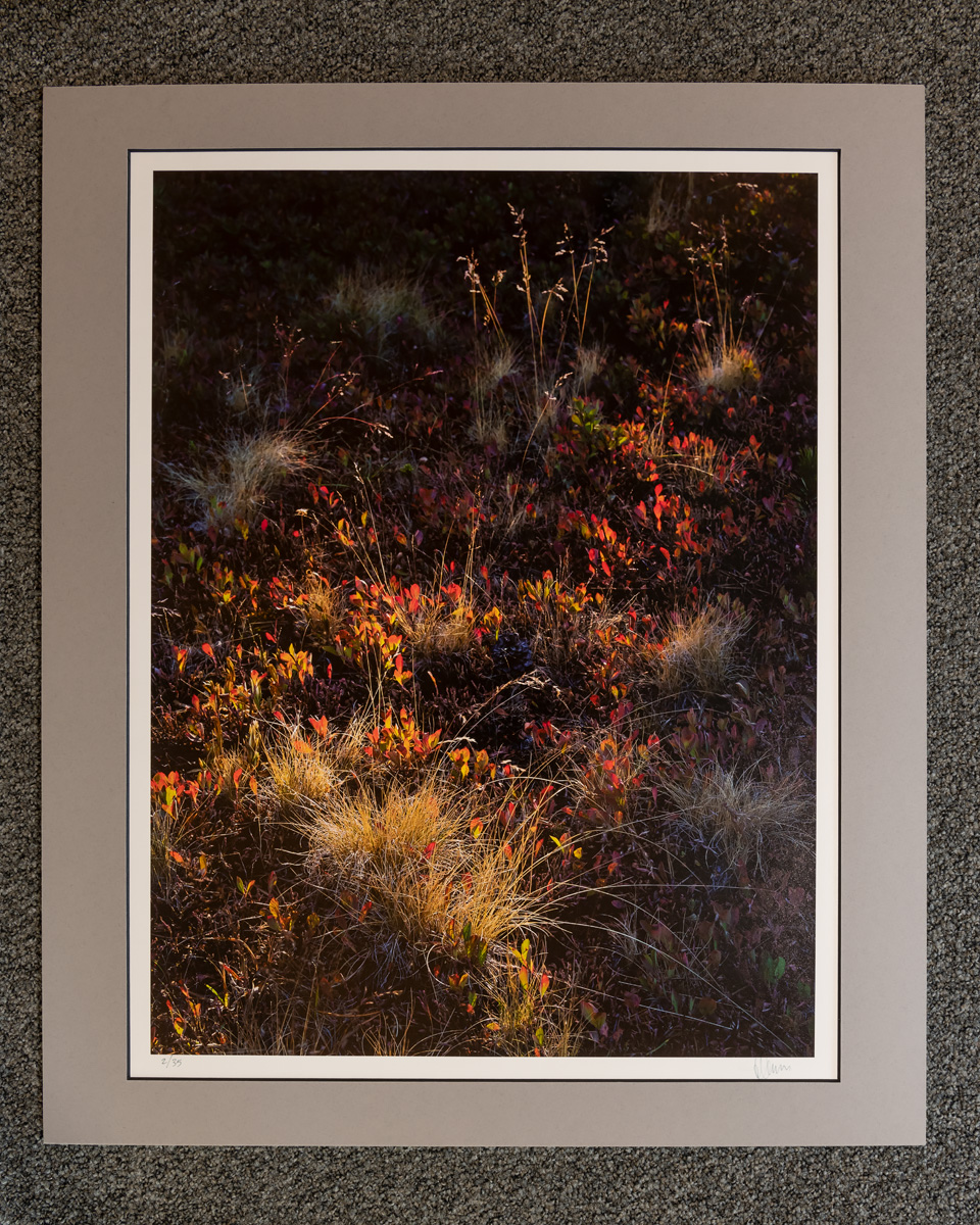 !SALE! 50% reduction on Exhibition Print. Overmat and print are flawless; back of mount may show signs of handling, wear, labels...