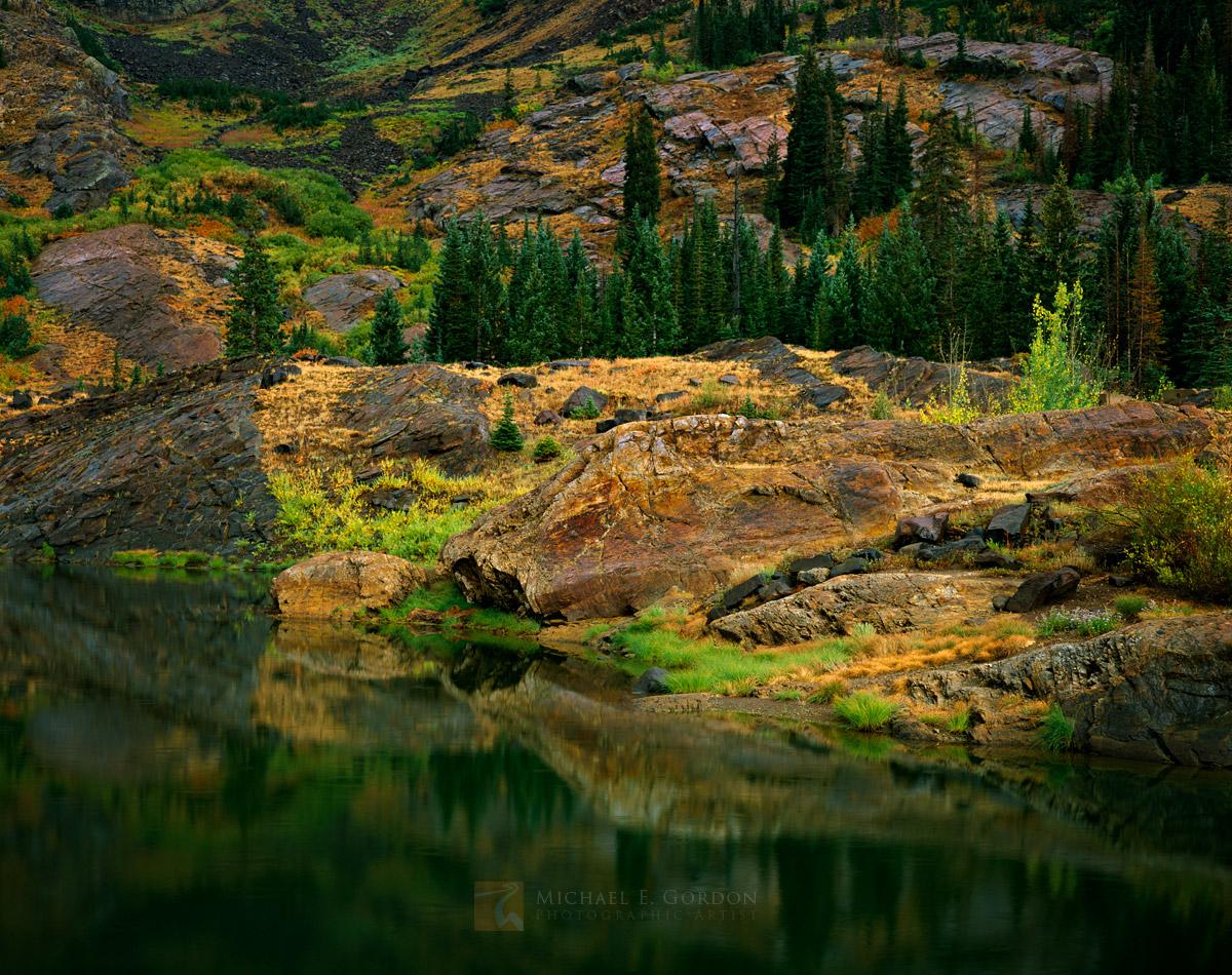 gentle, rain, palette, warm, autumn, color, Blue Spruce, Picea pungens, Quaking Aspen, Populus tremuloides, Willow, Salix, alpine, lake, Utah, Wasatch Mountains, photo