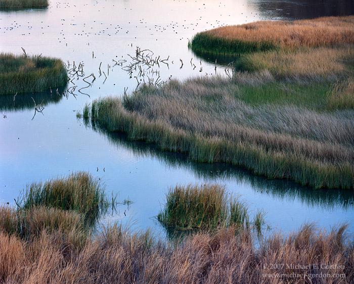 picture, photo, Taylor Lake, Colorado River, Picacho SRA, landscape, fine art print, photo
